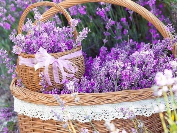 http://tchounette.t.c.pic.centerblog.net/0bae28d2.jpg