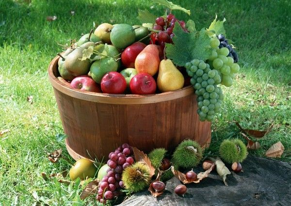 FRUITS D'AUTOMNE.